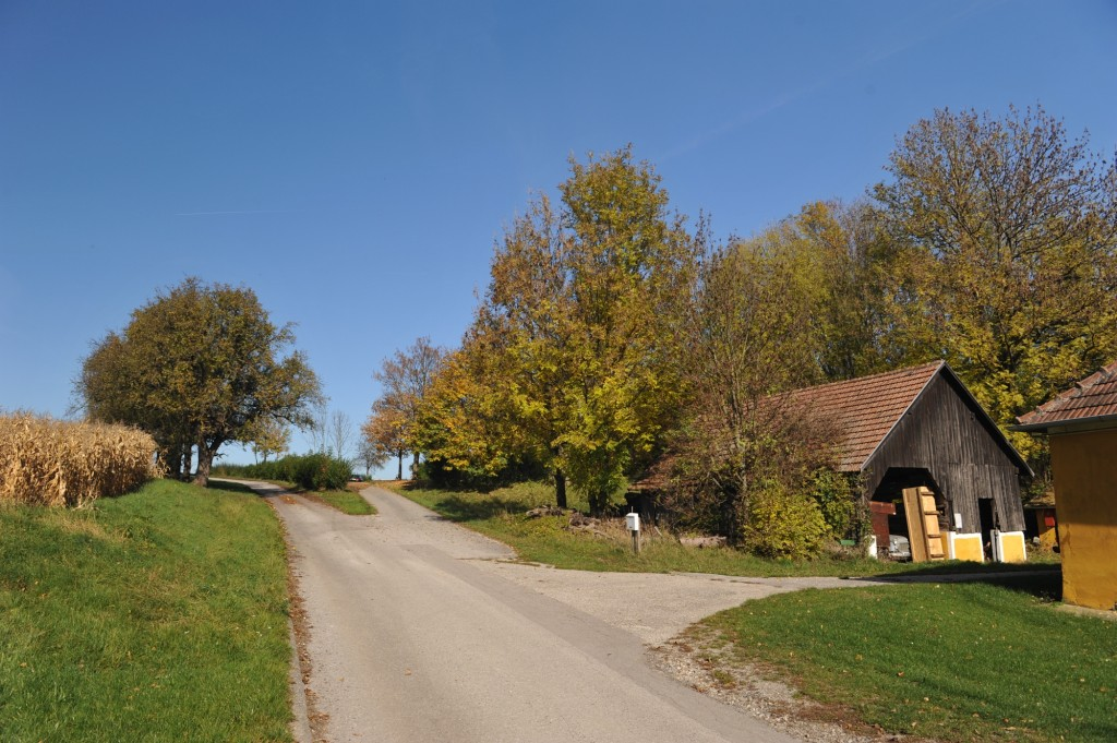 Campingplatz Finsterhof - Zufahrt zu unseren Stellplätzen