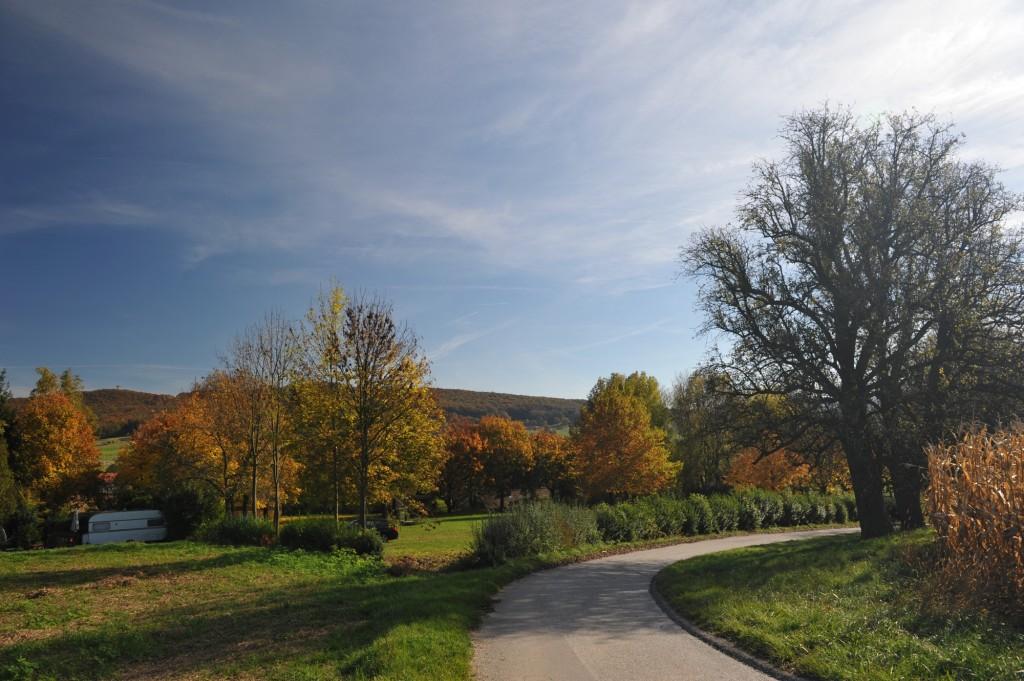 Campingplatz Finsterhof - ein Teil unserer Stellplätze im Herbst