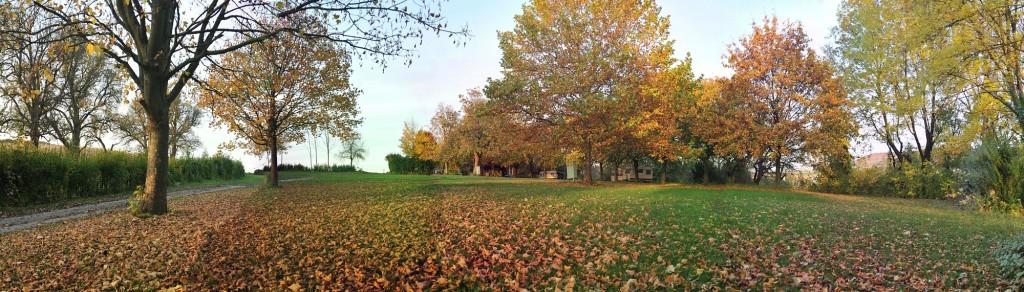 Campingplatz Finsterhof - eine Panoramaansicht unseres Stellplatzes für Sie (Herbst)